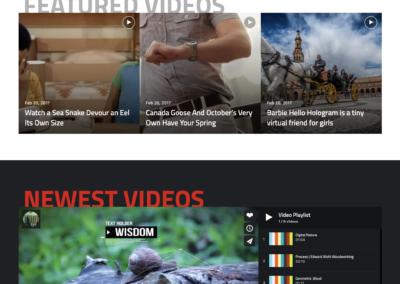 Template WordPress Jannah