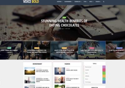 Thème WordPress Voice